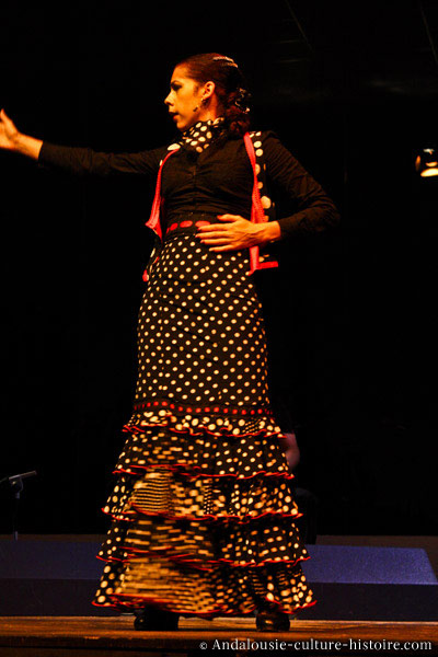 Flamenco: la distinction entre le genre musical et la danse