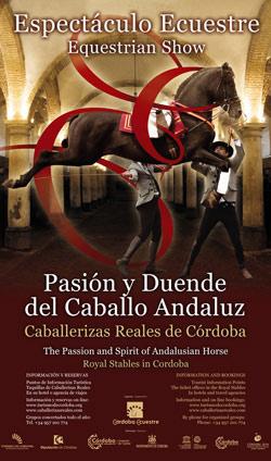 Spectacle équestre 2012 à Cordoue : Passion et Esprit du Cheval Andalou