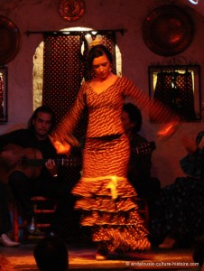 flamenco-cuevas-grenade-andalousie-espagne