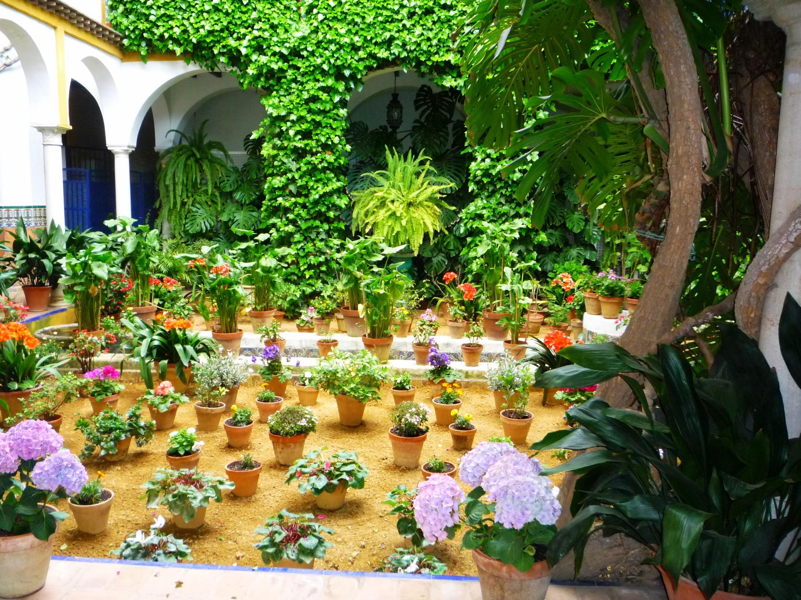 Un patio fleuri andalou à Cordoue